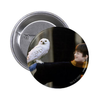 Harry and Hedwig 3 Pinback Button