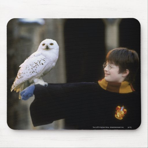Harry and Hedwig 3 Mousepads