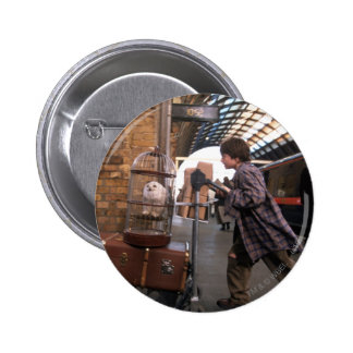 Harry and Hedwig PLATFORM 9 3/4™ Pinback Button