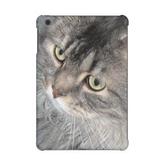 Harry caja de la retina del iPad del gato la mini