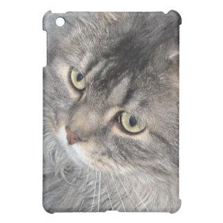 Harry caso del iPad del gato el mini