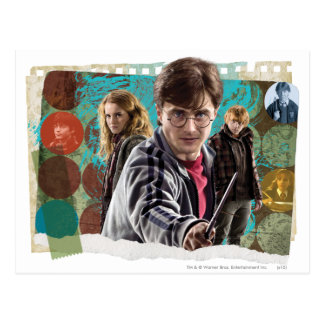 Harry, Hermione, and Ron 1 Post Card