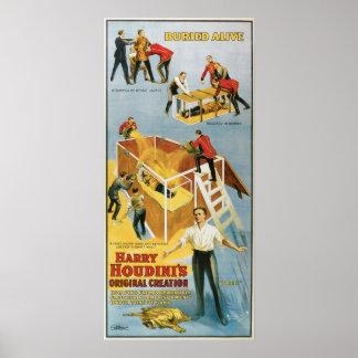 Harry Houdini Buried Alive Vintage Poster 1914