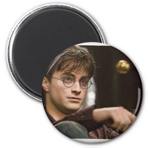 Harry Potter 17 2 Inch Round Magnet