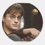 Harry Potter 17 Etiquetas Redondas