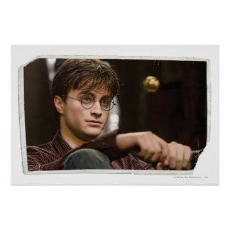 Harry Potter 17 Poster