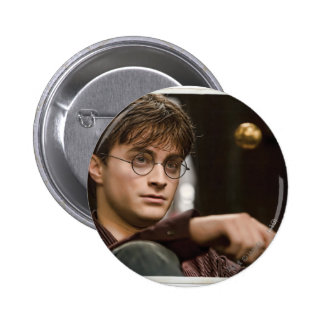 Harry Potter 17 Pin
