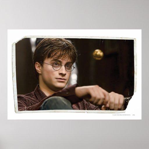 Harry Potter 17 Póster