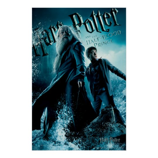 Harry Potter and Dumbledore on rocks 1 Poster