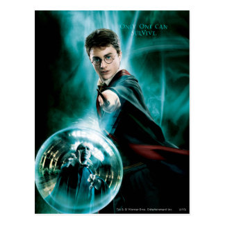 Harry Potter and Voldemort Only One Can Survive Postcard