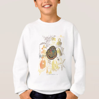 Harry Potter | Colorful Hogwarts Crest Sweatshirt