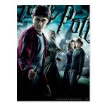 Harry Potter con Dumbledore Ron y Hermione 1 Tarjetas Postales