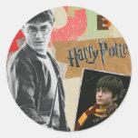 Harry Potter entonces y ahora Pegatinas Redondas