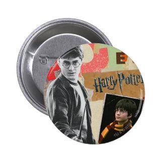 Harry Potter entonces y ahora Pins