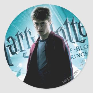 Harry Potter HPE6 2 Classic Round Sticker