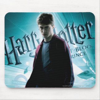 Harry Potter HPE6 2 Mouse Pad