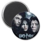 Harry Potter Movie Poster Magnet