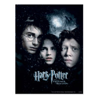 Harry Potter Movie Poster Postcard