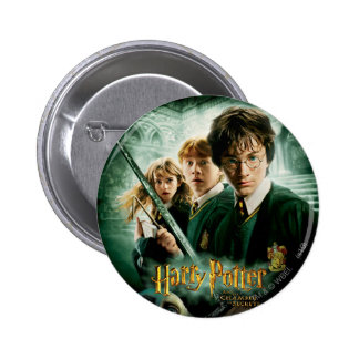 Harry Potter Ron Hermione Dobby Group Shot Pinback Button