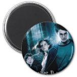 Harry Potter Ron Hermione en bosque Imán Para Frigorífico