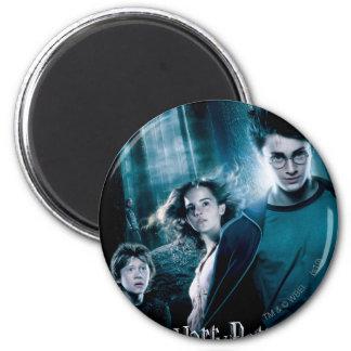 Harry Potter Ron Hermione en bosque Imanes
