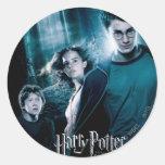 Harry Potter Ron Hermione en bosque Pegatina Redonda