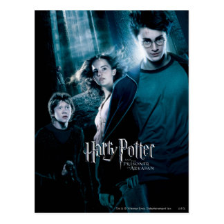Harry Potter Ron Hermione en bosque Tarjetas Postales