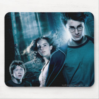 Harry Potter Ron Hermione In Forest Mouse Pad