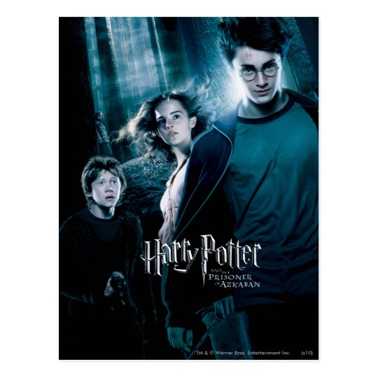 Harry Potter Ron Hermione In Forest Postcard