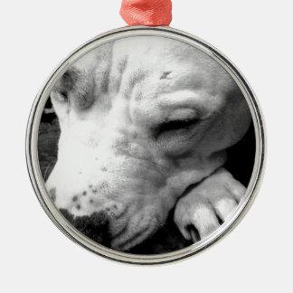 harry potter scar dog white pit bull metal ornament