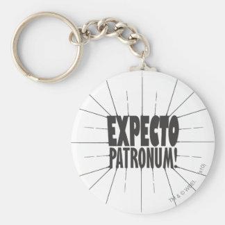 Harry Potter Spell | Expecto Patronum! Keychain
