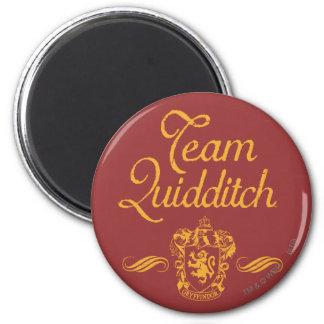 Harry Potter | Team QUIDDITCH™ Magnet