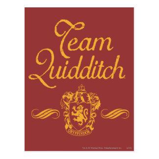 Harry Potter | Team QUIDDITCH™ Postcard