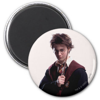 Harry Potter Wand Raised 2 Inch Round Magnet