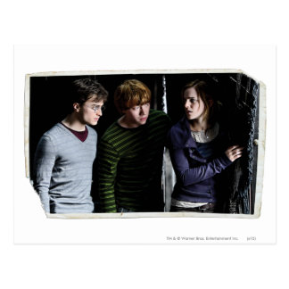 Harry, Ron, and Hermione 4 Postcard