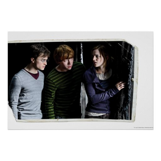 Harry, Ron, and Hermione 4 Poster