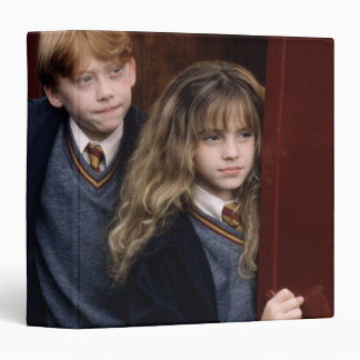 Harry, Ron, and Hermione Binder