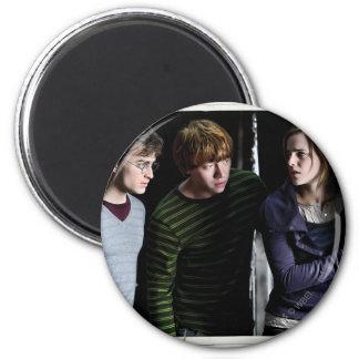 Harry, Ron, y Hermione 4 Imanes
