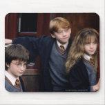 Harry, Ron, y Hermione Tapetes De Raton