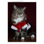 Harry Santa! Greeting Cards
