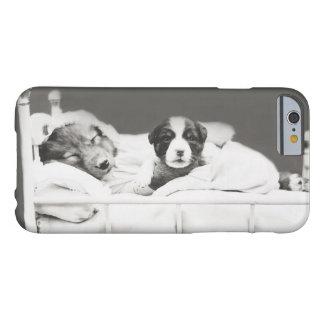 Harry Whittier libera el caso insomne del perrito Funda Barely There iPhone 6