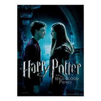 Harry y Ginny 1 Póster
