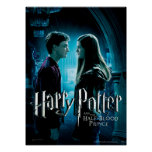 Harry y Ginny 1 Posters