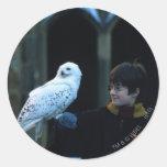 Harry y Hedwig 2 Etiqueta Redonda
