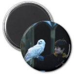 Harry y Hedwig 2 Imán Redondo 5 Cm