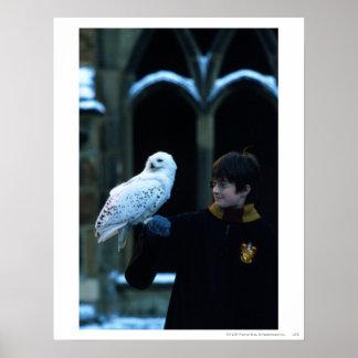 Harry y Hedwig 2 Impresiones