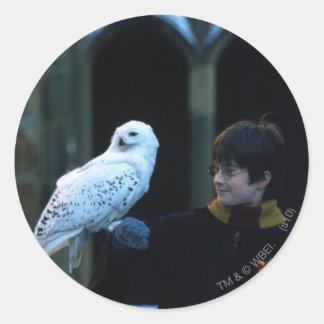 Harry y Hedwig 2 Pegatina Redonda