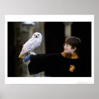 Harry y Hedwig 3 Impresiones