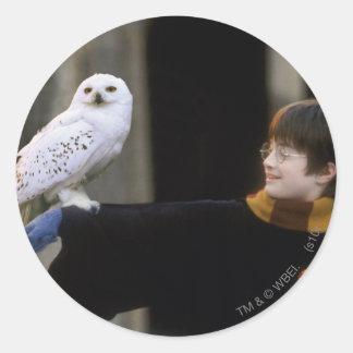 Harry y Hedwig 3 Pegatina Redonda