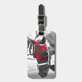 Hartack Jr. Bag Tag